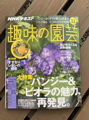 趣味の園芸テキスト11月号早速買いました😊_b0137969_06544899.jpeg