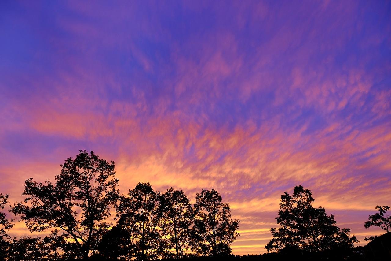 キャンプ場で見た夕焼け。_a0129474_20572368.jpg