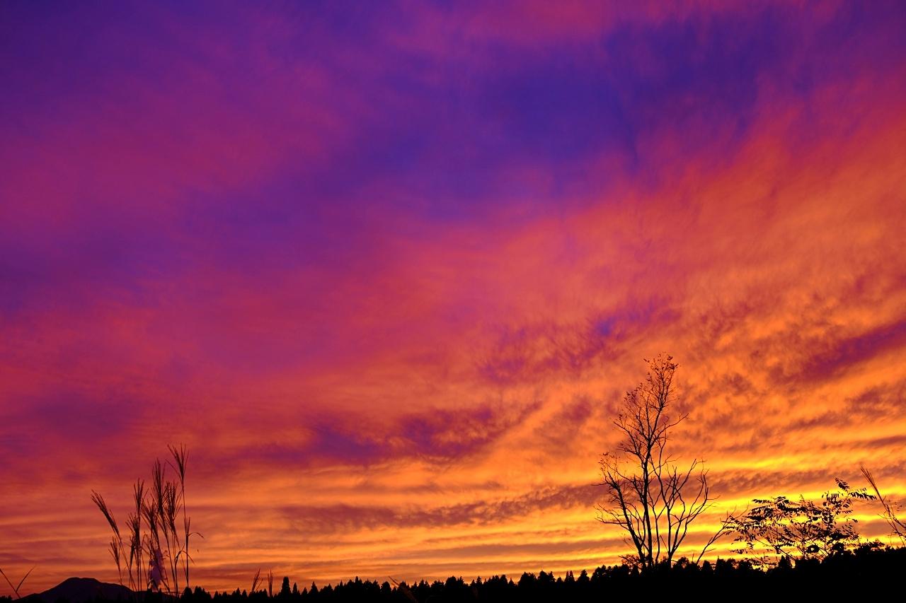 キャンプ場で見た夕焼け。_a0129474_20573687.jpg