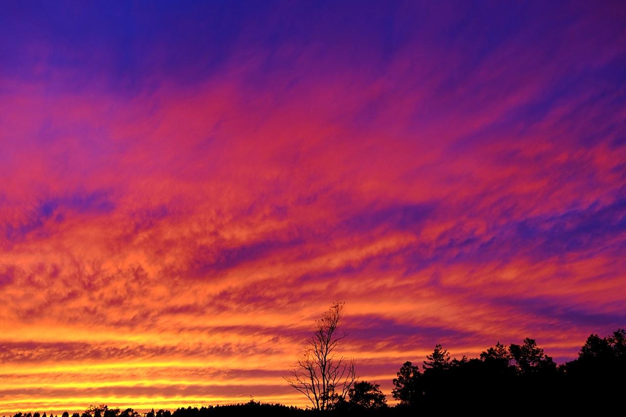 キャンプ場で見た夕焼け。_a0129474_20580171.jpg