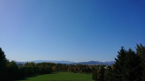 川下公園でノルディック、秋晴れのもと終了^-^!_d0198793_14012773.jpg