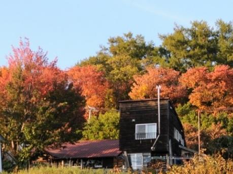 秋冬の営業日についてのお知らせ_c0125899_12440855.jpg