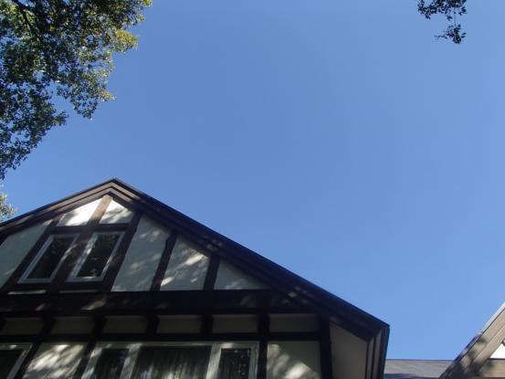久しぶりの雲ひとつない青空_f0064906_13073122.jpg