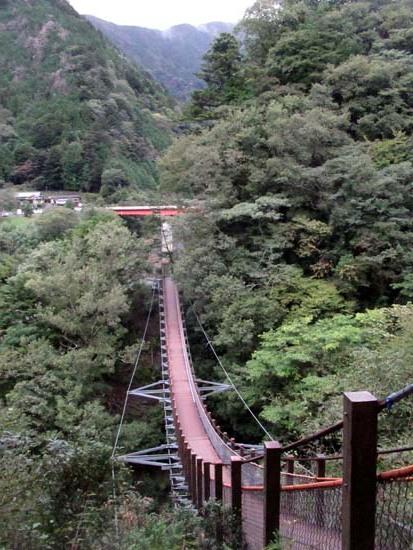 大井川鉄道2 アプトラインに乗って_e0048413_18240159.jpg
