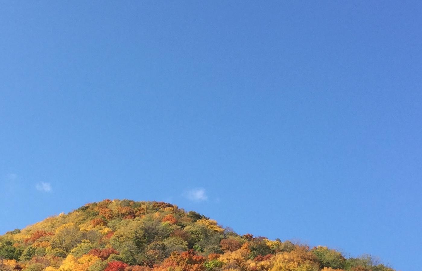 紅葉真っ盛り       「恵」_b0075826_21543555.jpeg