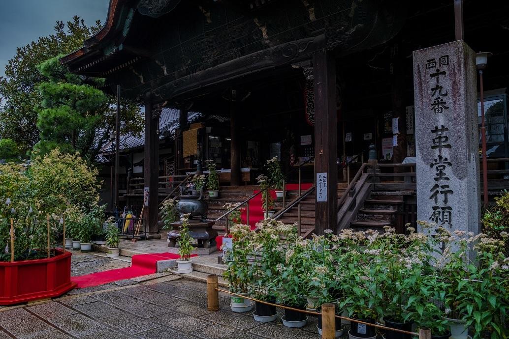 藤袴祭~革堂行願寺_e0363038_10595841.jpg