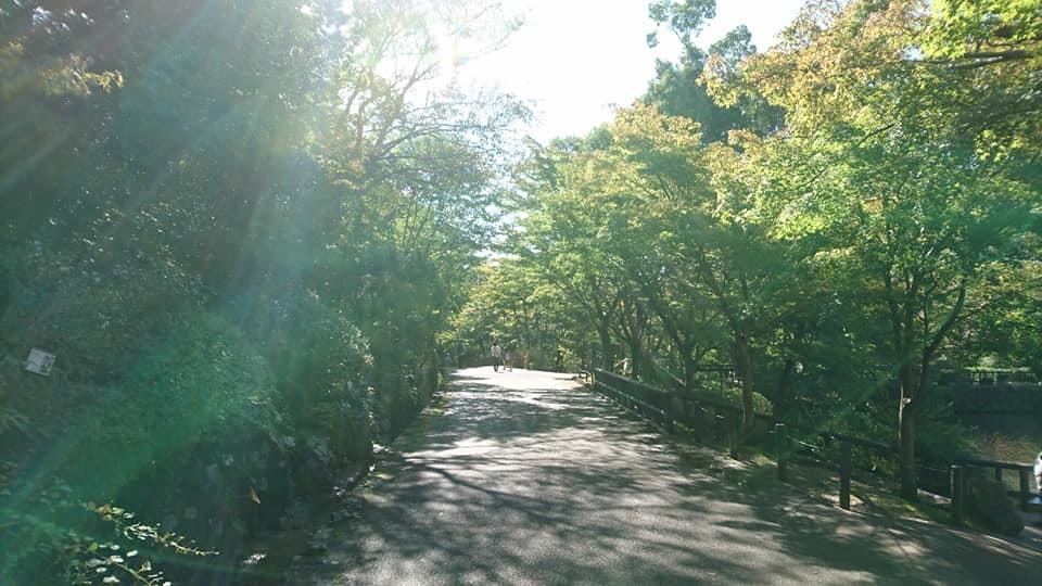 東山動植物園へ行ってきました♪_f0373339_15115301.jpg