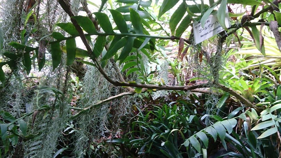 東山動植物園へ行ってきました♪_f0373339_15131015.jpg