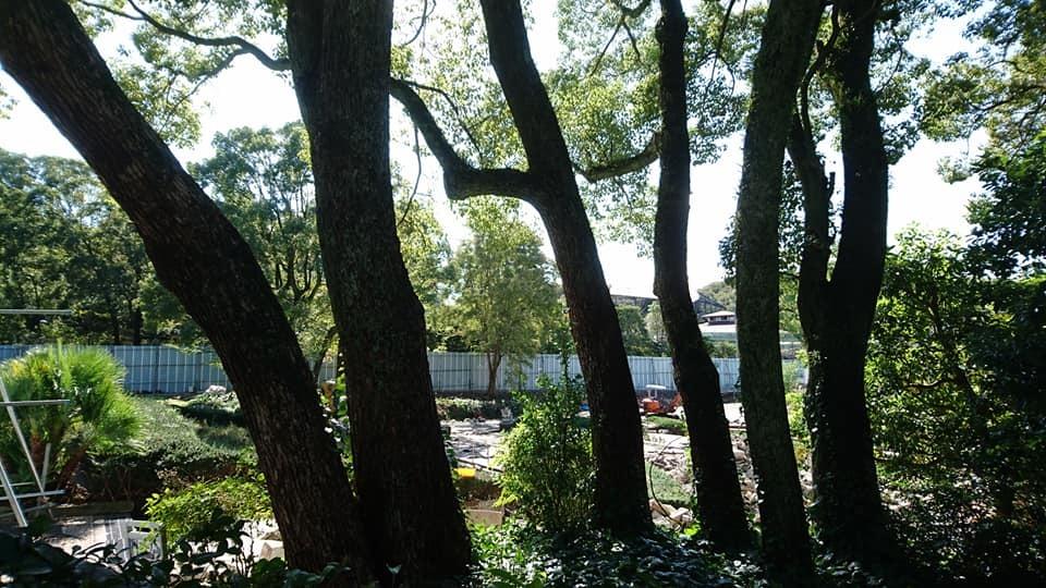 東山動植物園へ行ってきました♪_f0373339_15284283.jpg