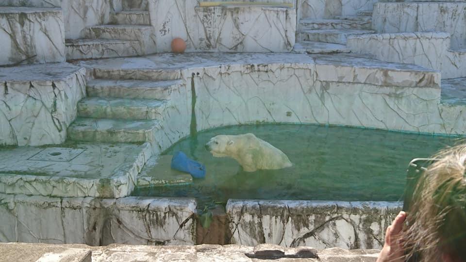 東山動植物園へ行ってきました♪_f0373339_15322582.jpg