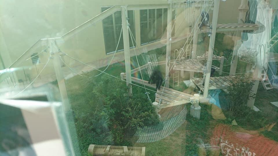 東山動植物園へ行ってきました♪_f0373339_15322636.jpg
