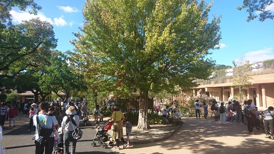 東山動植物園へ行ってきました♪_f0373339_15322661.jpg