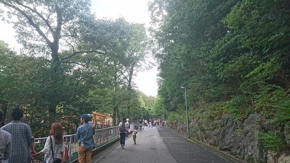 東山動植物園へ行ってきました♪_f0373339_15322680.jpg