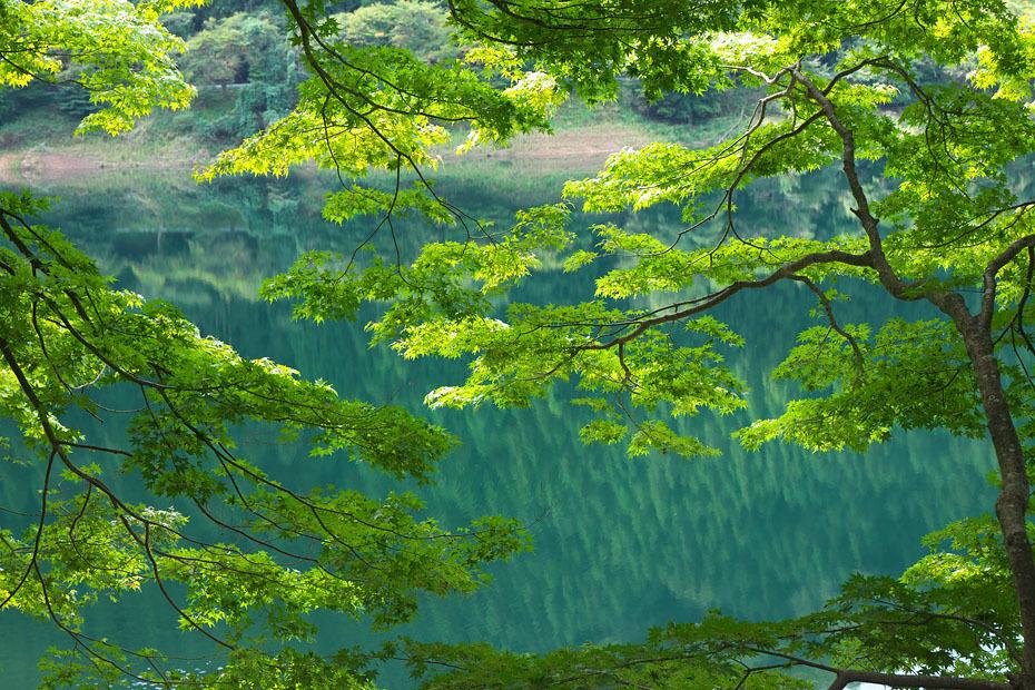 初秋の銀山湖_c0067040_21444900.jpg