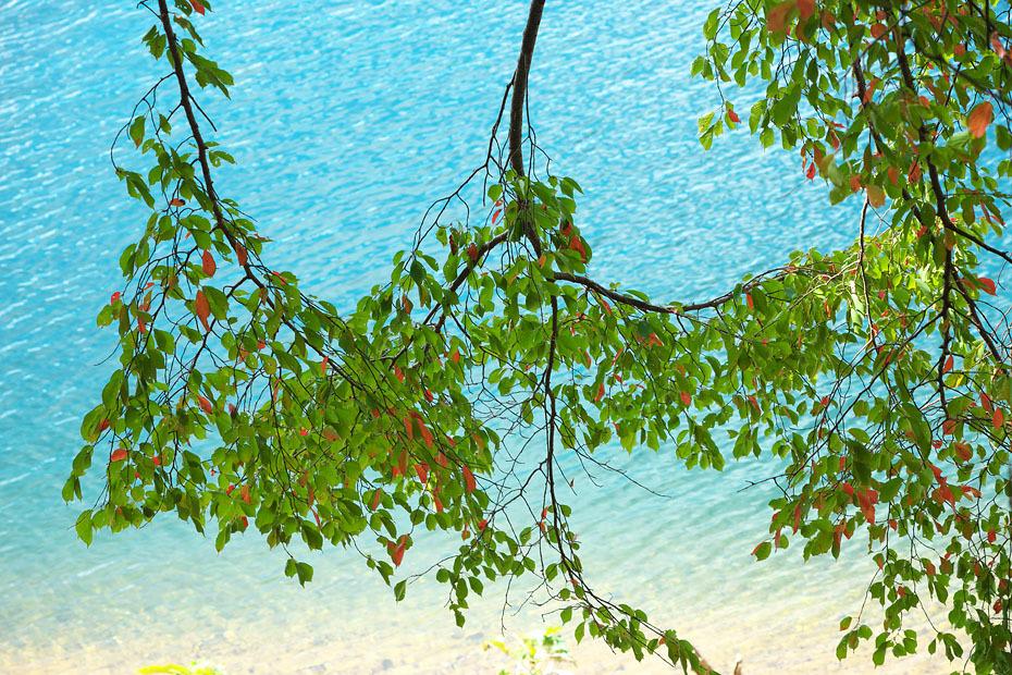 初秋の銀山湖_c0067040_21452052.jpg