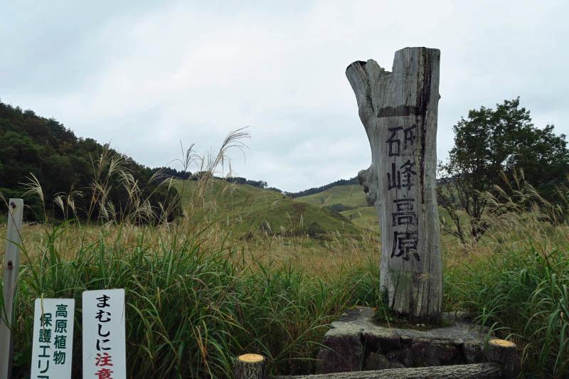 砥峰高原 ススキの高原とリラクシアの森を歩こう_c0218841_13332591.jpg