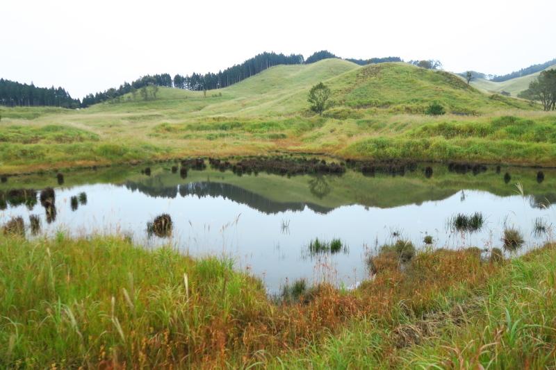 砥峰高原 ススキの高原とリラクシアの森を歩こう_c0218841_13334375.jpg