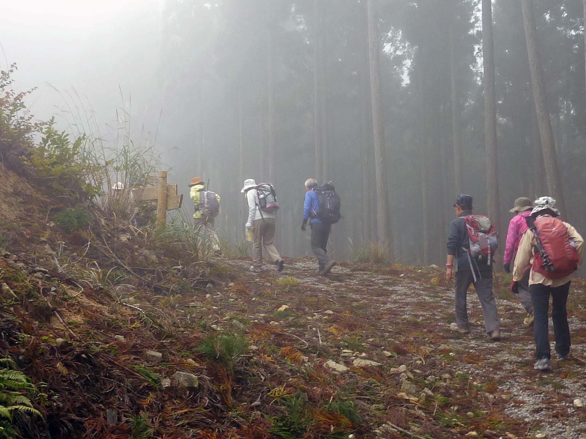 砥峰高原 ススキの高原とリラクシアの森を歩こう_c0218841_13355064.jpg