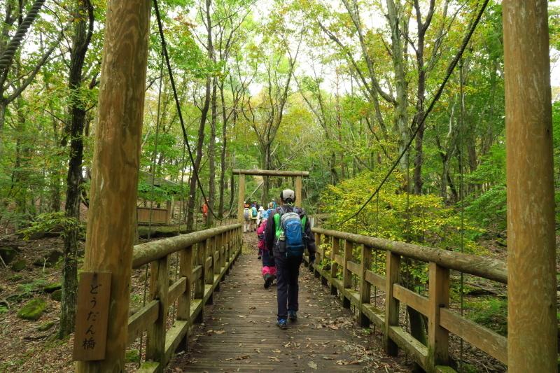 砥峰高原 ススキの高原とリラクシアの森を歩こう_c0218841_13374460.jpg