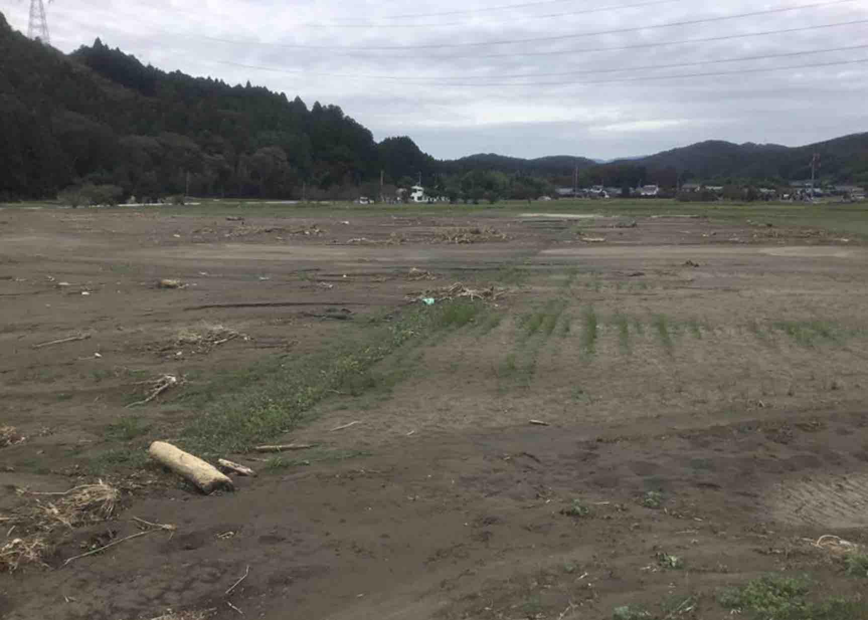 遠野町、鮫川の氾濫決壊による浸水被害_e0068696_613798.jpg