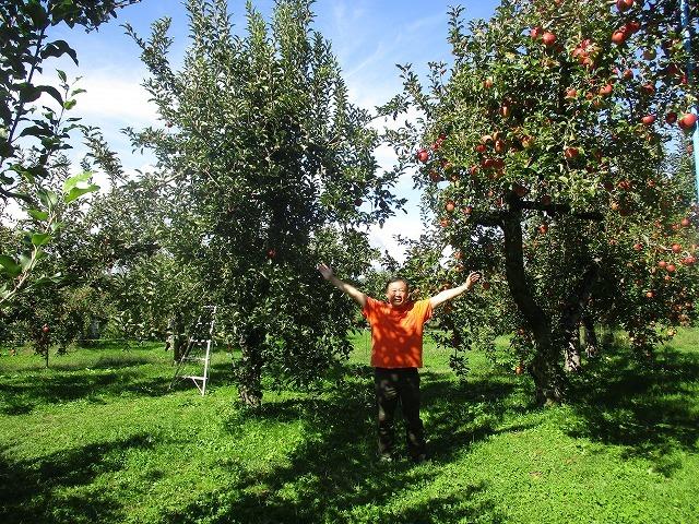 小野りんご園で紅玉 巨砲_b0163804_13594016.jpg