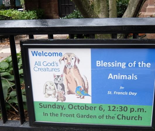 動物のための教会イベント(Blessing of the Animals)_b0007805_07142030.jpg