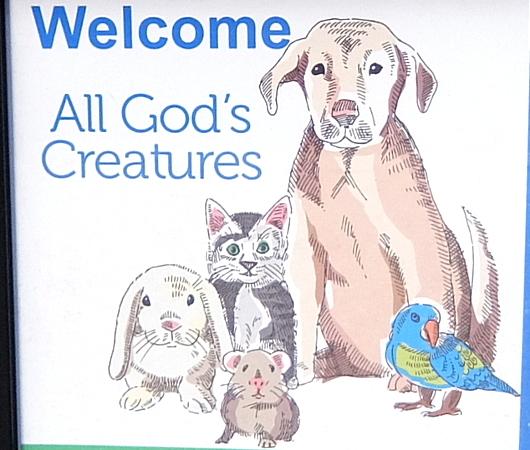 動物のための教会イベント(Blessing of the Animals)_b0007805_07152679.jpg