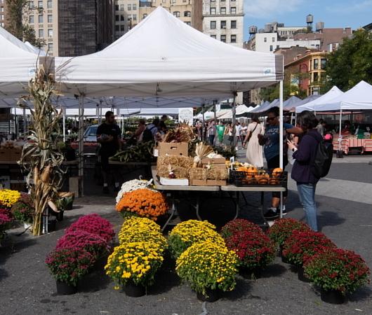 秋のニューヨークの青空市場風景_b0007805_07285468.jpg