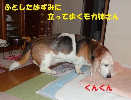 f0121712_21380934.jpg