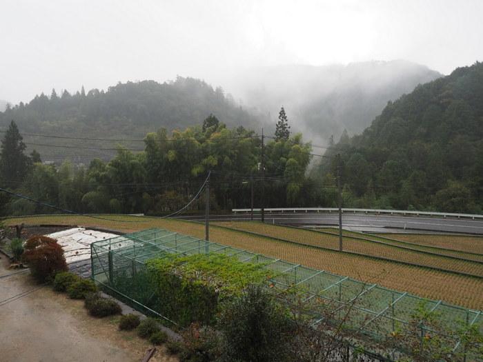 雨の一日_c0116915_23482017.jpg