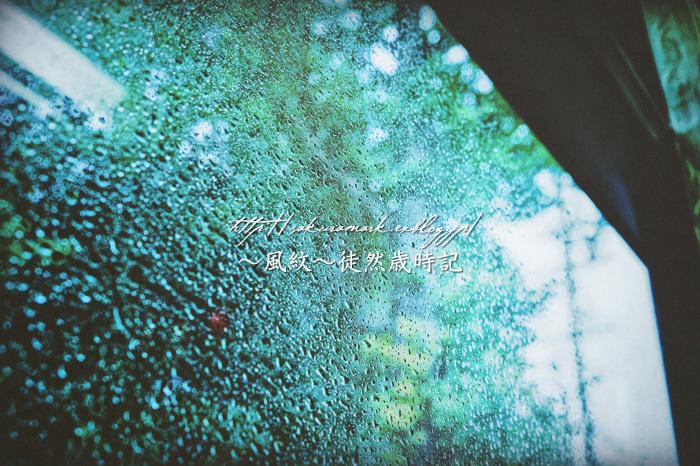 雨の日の緑。_f0235723_19073595.jpg