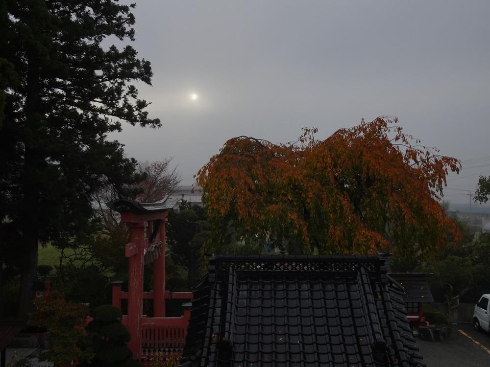 秋深まる_c0111229_18232810.jpg