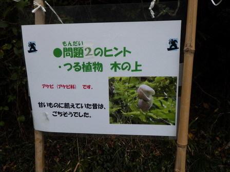 小学四年生の自然体験学習_a0123836_15463152.jpg