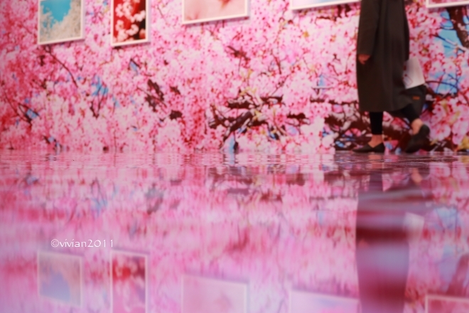 蜷川実花展 ~虚構と現実の間に~ in 宇都宮美術館_e0227942_21452356.jpg