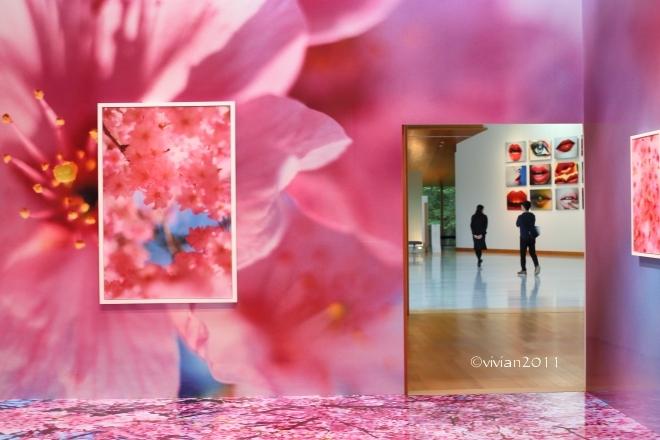 蜷川実花展 ~虚構と現実の間に~ in 宇都宮美術館_e0227942_21455653.jpg