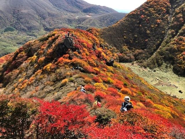 紅葉真っ盛りの三俣山_e0164643_11094175.jpg