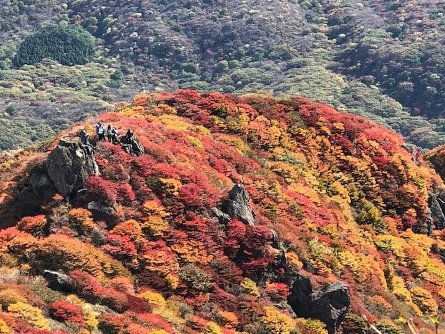 紅葉真っ盛りの三俣山_e0164643_11094816.jpg
