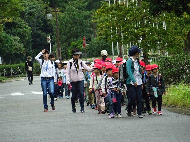 淡輪小学校1年生遠足「うみべの森探検」_c0108460_14470632.jpg