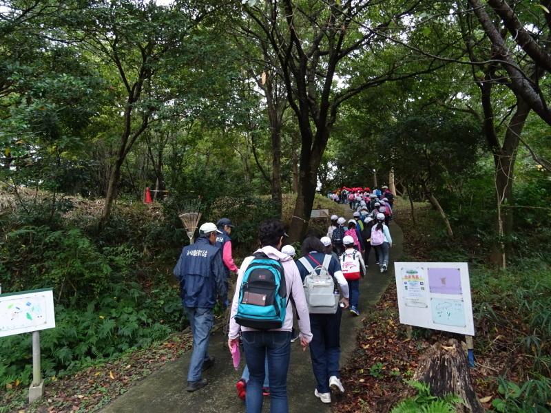 淡輪小学校1年生遠足「うみべの森探検」_c0108460_14474765.jpg