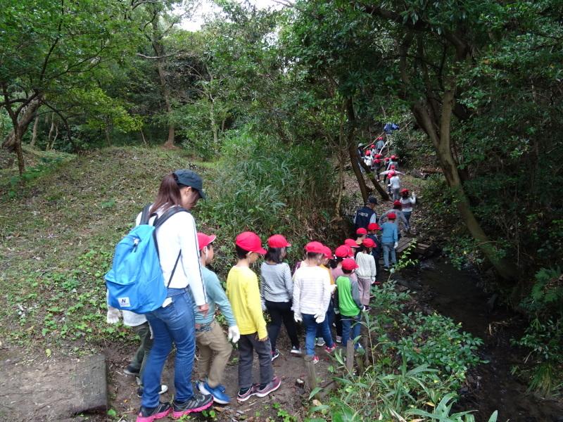 淡輪小学校1年生遠足「うみべの森探検」_c0108460_14483303.jpg