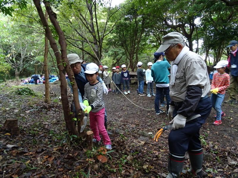 淡輪小学校1年生遠足「うみべの森探検」_c0108460_14491655.jpg