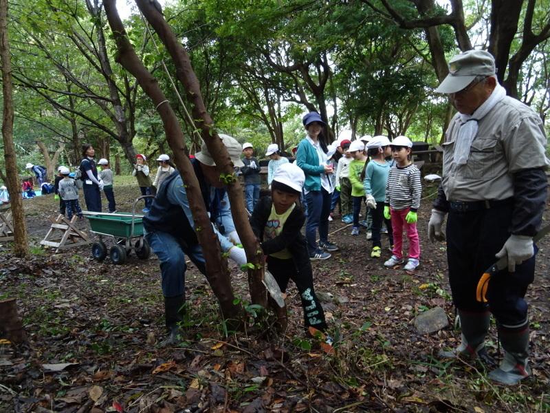 淡輪小学校1年生遠足「うみべの森探検」_c0108460_14491781.jpg