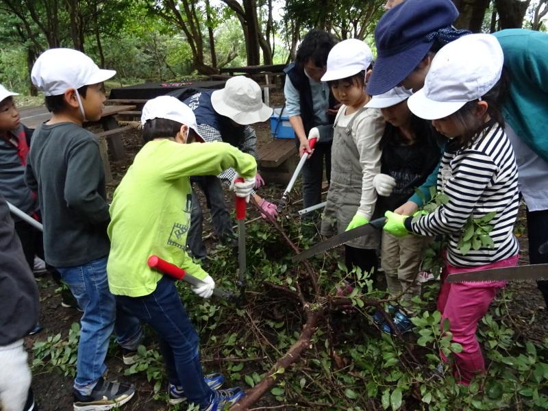 淡輪小学校1年生遠足「うみべの森探検」_c0108460_14515209.jpg