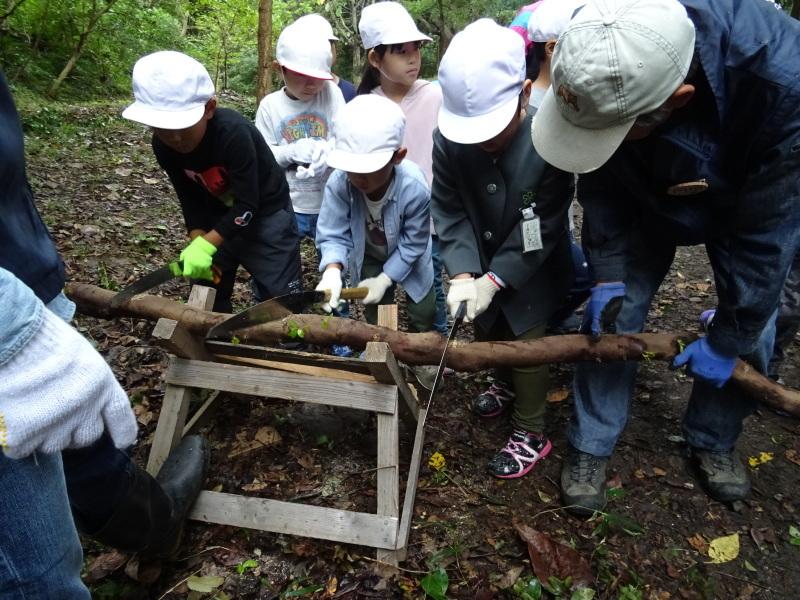 淡輪小学校1年生遠足「うみべの森探検」_c0108460_14515349.jpg