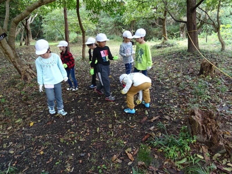 淡輪小学校1年生遠足「うみべの森探検」_c0108460_14532296.jpg