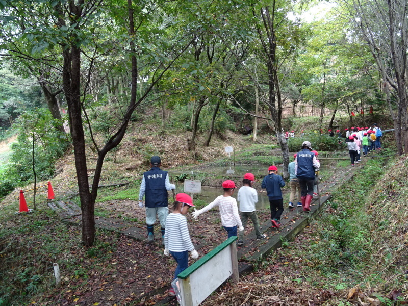 淡輪小学校1年生遠足「うみべの森探検」_c0108460_14591983.jpg