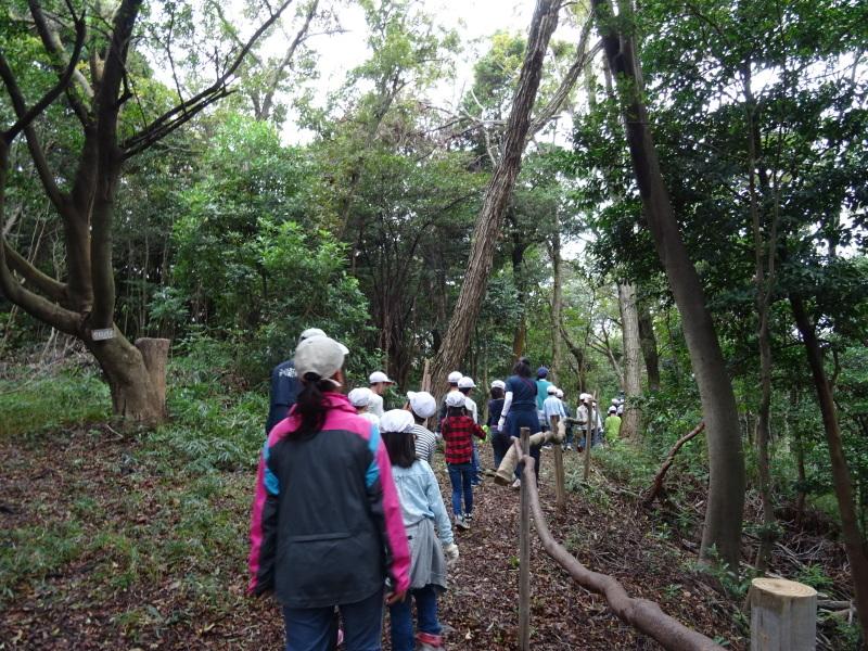 淡輪小学校1年生遠足「うみべの森探検」_c0108460_15011200.jpg