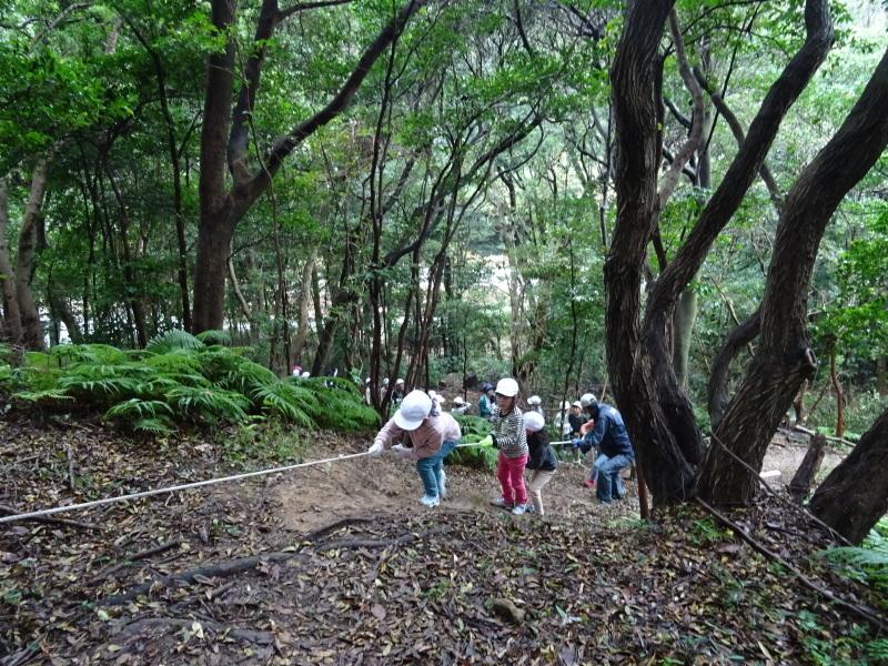 淡輪小学校1年生遠足「うみべの森探検」_c0108460_15021241.jpg