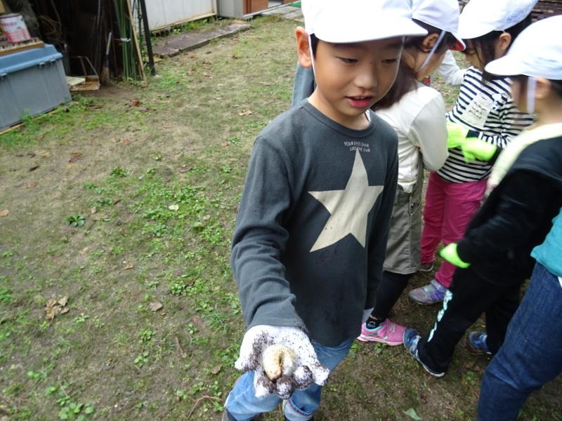 淡輪小学校1年生遠足「うみべの森探検」_c0108460_15041101.jpg