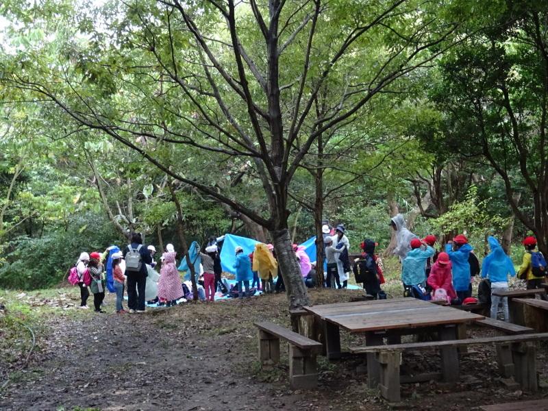 淡輪小学校1年生遠足「うみべの森探検」_c0108460_15044400.jpg